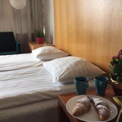 Arkadia Hotel & Hostel Стандартный номер с различными типами кроватей фото 3