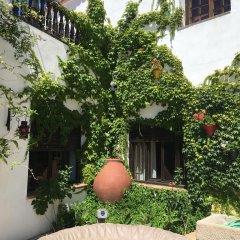 Hotel Rural Las Cinco Ranas фото 2