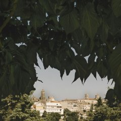 Отель Casa Vacanze Patrizia Бернальда