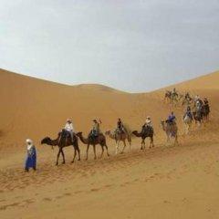 Отель Bivouac Morocco Safari Tours Марокко, Мерзуга - отзывы, цены и фото номеров - забронировать отель Bivouac Morocco Safari Tours онлайн развлечения