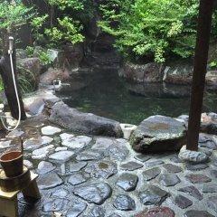 Отель Seifuso Минамиогуни бассейн фото 2