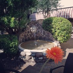 Отель Venice Palace Hotel Италия, Мирано - отзывы, цены и фото номеров - забронировать отель Venice Palace Hotel онлайн фото 2
