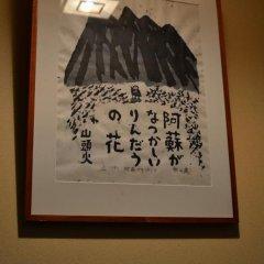 Отель Guest House MAKOTOGE - Hostel Япония, Минамиогуни - отзывы, цены и фото номеров - забронировать отель Guest House MAKOTOGE - Hostel онлайн развлечения