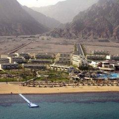 Отель Aquis Taba Paradise Resort Египет, Таба - отзывы, цены и фото номеров - забронировать отель Aquis Taba Paradise Resort онлайн пляж фото 2