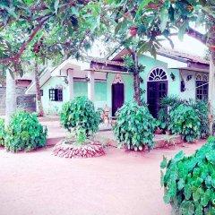 Sylvester Villa Hostel Negombo Кровать в общем номере с двухъярусной кроватью фото 5