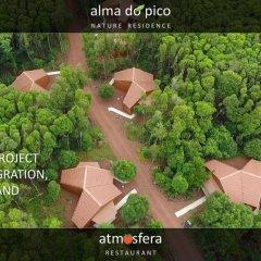 Отель Alma do Pico Португалия, Мадалена - отзывы, цены и фото номеров - забронировать отель Alma do Pico онлайн фото 5