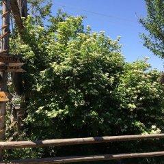 Отель Turkestan Yurt Camp Кыргызстан, Каракол - отзывы, цены и фото номеров - забронировать отель Turkestan Yurt Camp онлайн балкон
