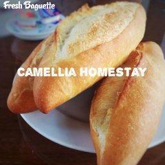 Отель Camellia Homestay спа фото 2
