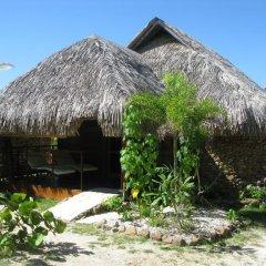 Отель Green Lodge Moorea Французская Полинезия, Папеэте - отзывы, цены и фото номеров - забронировать отель Green Lodge Moorea онлайн фото 6