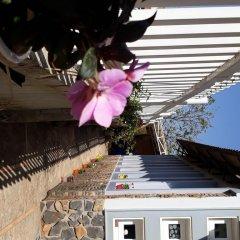 Отель Villa 288 Далат фото 2