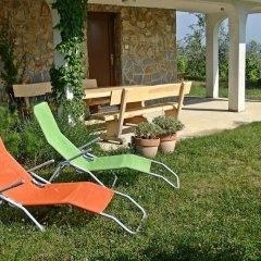 Отель Farm stay Domačija Butul фото 9