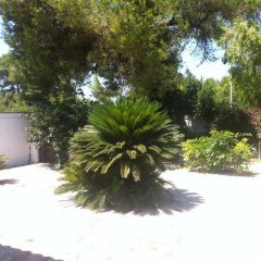 Отель Casa Battisti a San Cataldo Лечче фото 2