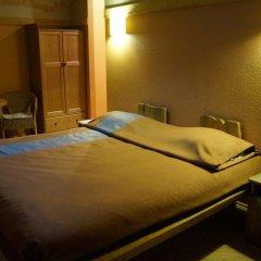 Гостиница Melnitsa Inn Номер Делюкс разные типы кроватей фото 2