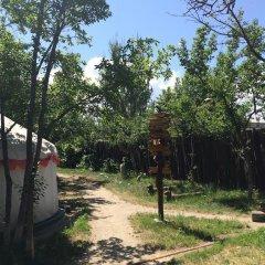 Отель Turkestan Yurt Camp Кыргызстан, Каракол - отзывы, цены и фото номеров - забронировать отель Turkestan Yurt Camp онлайн фото 5