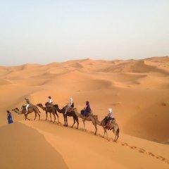 Отель Casa Hassan Марокко, Мерзуга - отзывы, цены и фото номеров - забронировать отель Casa Hassan онлайн приотельная территория