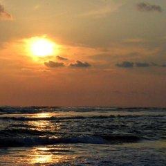 Отель Bougain Villa Шри-Ланка, Берувела - отзывы, цены и фото номеров - забронировать отель Bougain Villa онлайн пляж