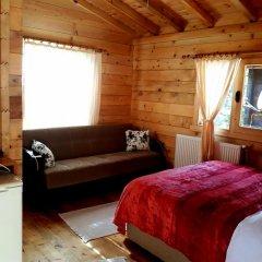 Ayder Cise Dag Evleri Шале с различными типами кроватей фото 49
