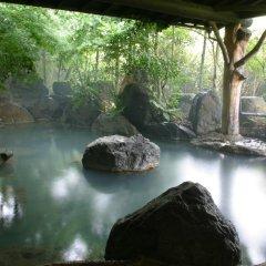Отель Yamashinobu Минамиогуни бассейн фото 3