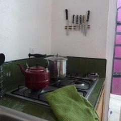 Апартаменты Sunflower Apartment near Coyoacan District Мехико питание