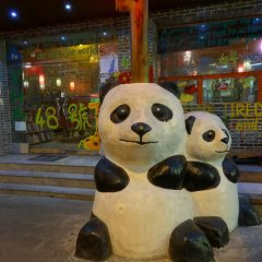 Chengdu No.48 International Youth Hostel интерьер отеля