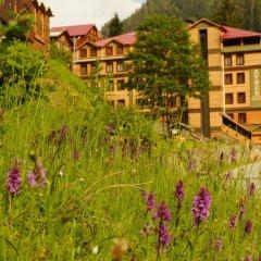 Ayder Resort Hotel фото 8