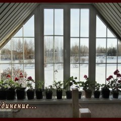 Гостиница Lilac Garden в Старом Мартьяновом отзывы, цены и фото номеров - забронировать гостиницу Lilac Garden онлайн Старое Мартьяново помещение для мероприятий
