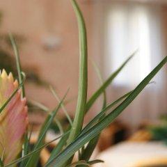 Отель Resi & Dep Италия, Вигонца - отзывы, цены и фото номеров - забронировать отель Resi & Dep онлайн фото 5