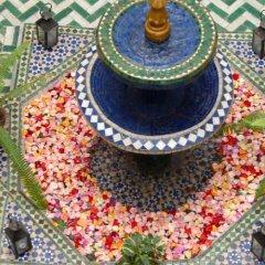 Отель Riad Mimouna Марокко, Марракеш - отзывы, цены и фото номеров - забронировать отель Riad Mimouna онлайн фото 6
