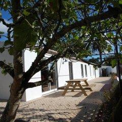 Отель House in a Farm 2km from the Ericeira Beach пляж