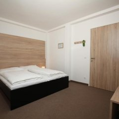 Отель Seminarhotel Springer Schlossl Стандартный номер с двуспальной кроватью