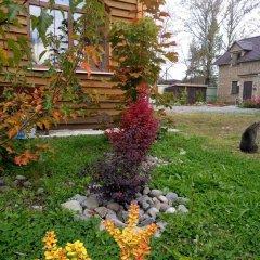 Гостиница guest house Elizaveta фото 3