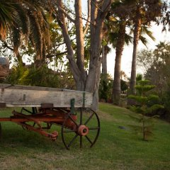 California Trailer Park & Hotel детские мероприятия