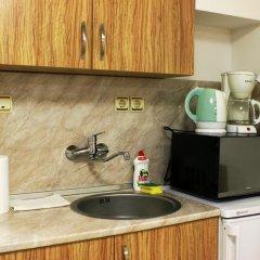 Апартаменты Studio Pleven City Плевен удобства в номере фото 2