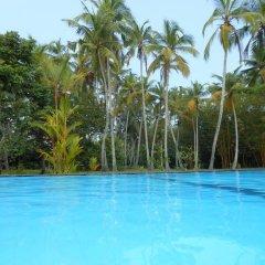 Отель Zum Deutschen Шри-Ланка, Бентота - отзывы, цены и фото номеров - забронировать отель Zum Deutschen онлайн бассейн фото 2
