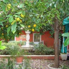 Отель Gioia Bed and Breakfast фото 5