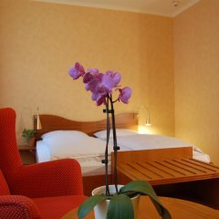 Отель Albrechtshof Германия, Берлин - отзывы, цены и фото номеров - забронировать отель Albrechtshof онлайн комната для гостей фото 5