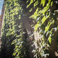 Hotel Grifo фото 13