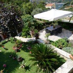 Отель Studios Vuckovic Черногория, Доброта - отзывы, цены и фото номеров - забронировать отель Studios Vuckovic онлайн фото 4