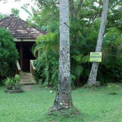 Отель Kahuna Hotel Шри-Ланка, Галле - 1 отзыв об отеле, цены и фото номеров - забронировать отель Kahuna Hotel онлайн фото 12