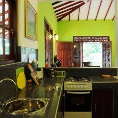 Отель Coco Cabana Шри-Ланка, Бентота - отзывы, цены и фото номеров - забронировать отель Coco Cabana онлайн в номере фото 2
