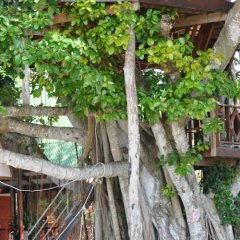 Отель Charm Beach Resort фото 10