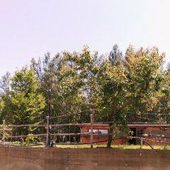 Отель Country Club Primi Faggi Санто-Стефано-ин-Аспромонте приотельная территория фото 2