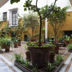 Отель Cervantes Испания, Севилья - отзывы, цены и фото номеров - забронировать отель Cervantes онлайн фото 5