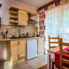 Отель Aparthotel Pod Nosalem Люкс фото 3