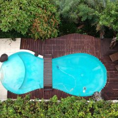 Отель Chalet de tahiti Французская Полинезия, Пунаауиа - отзывы, цены и фото номеров - забронировать отель Chalet de tahiti онлайн бассейн
