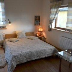 Отель Namai prie ezero Стандартный номер с различными типами кроватей фото 7