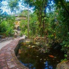 Отель Great Huts Ямайка, Порт Антонио - отзывы, цены и фото номеров - забронировать отель Great Huts онлайн фото 11