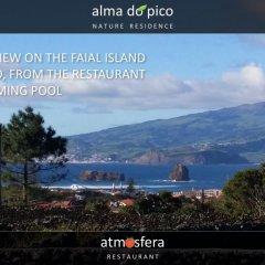 Отель Alma do Pico Португалия, Мадалена - отзывы, цены и фото номеров - забронировать отель Alma do Pico онлайн приотельная территория фото 2