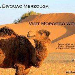 Отель Camel Bivouac Merzouga Марокко, Мерзуга - отзывы, цены и фото номеров - забронировать отель Camel Bivouac Merzouga онлайн с домашними животными