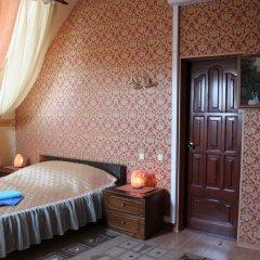 Гостиница У Домика Петра удобства в номере